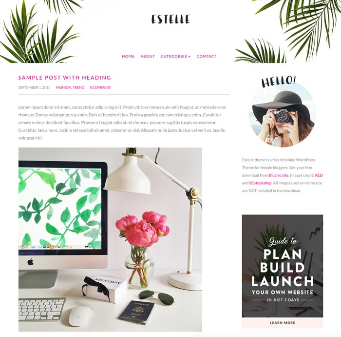 trucs-de-blogueuse-theme-wordpress-estelle-blog