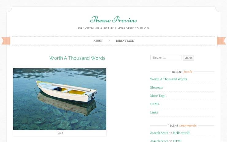 trucs-de-blogueuse-theme-wordpress-feminin-1