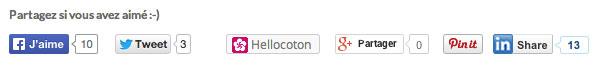 trucs-de-blogueuse---bouton-hellocoton-5