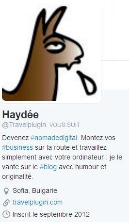 travelplugin-twitter